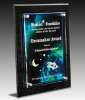 Global Success Plaque Traditional Acrylic Award Series