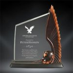 Acrylic & Resin Eagle Achievement Awards