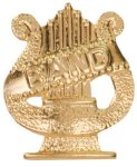 Gold Band Metal Chenille Letter Insignia Lapel Pins