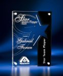 Star Cutout Clear and Black Acrylic Award Modern Design Award Series