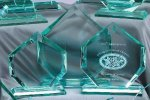 Premium Glass Apex Sales Awards