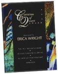 Blue Acrylic Art Plaque Award Sales Awards