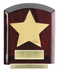 Star Dome Corporate Plaques Stand Wood Metal Accent Awards